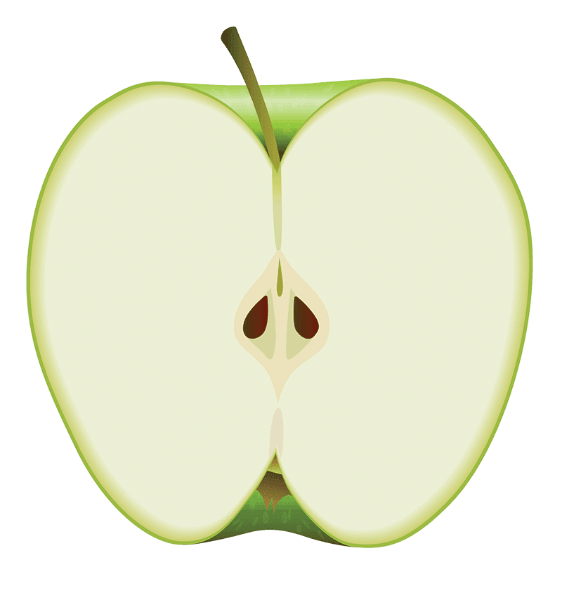A half of sliced apple standing up