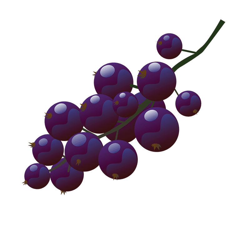 bunch of blackcurrents